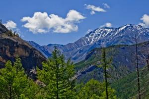 Пример фото на природе. Canon EF 28-70 f/2.8L