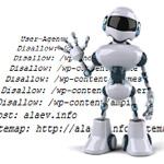 Особенности индексации сайтов – robots.txt, мета-тег robots и внутренние ссылки