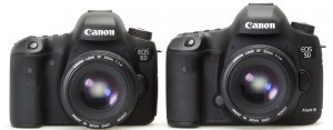 Canon EOS 6D и 5D mark III, вид спереди