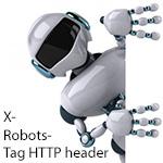 Использование и применение X-Robots-Tag HTTP header