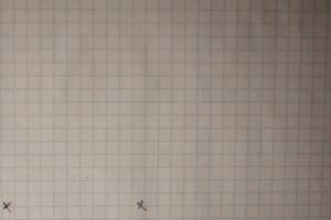 Клетчатый лист. 50mm f/1.8 II
