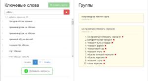 Сервис kg.ppc-panel.ru